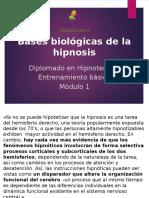 06 - Bases biologicas