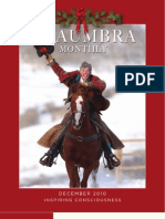 Shaumbra Monthly - December 2010