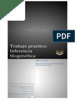 La inferencia filogenética consiste en la identificación de los caracteres homólogos entre especies