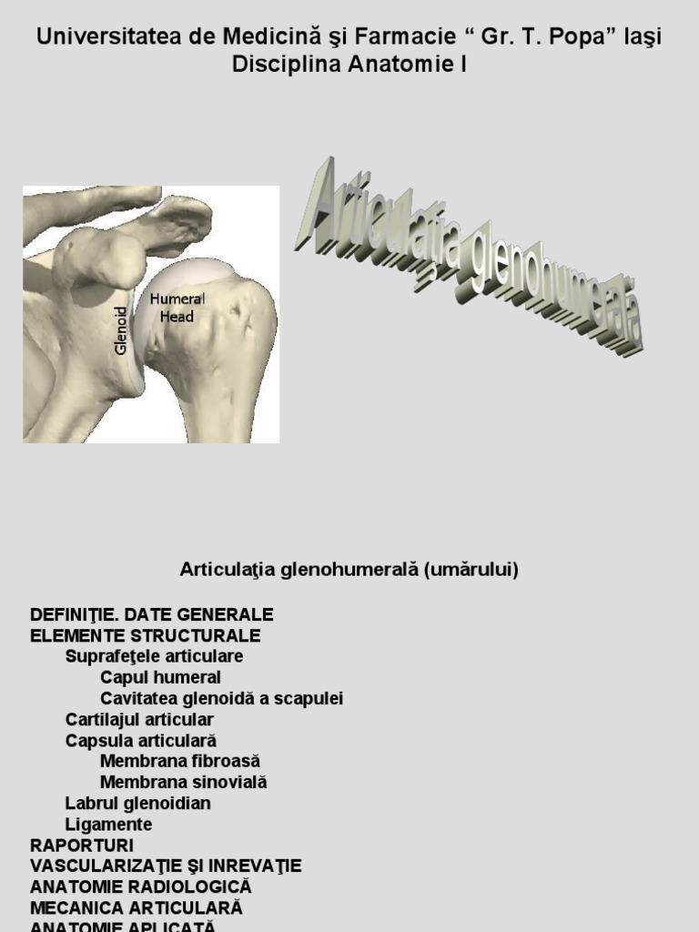 sulfat de condroitină și glucozamină pentru tratamentul artrozei durere lombara cauze