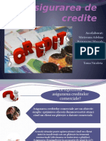 Asigurarea-de-credite
