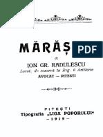 Ion Gr. Rădulescu, Mărăștii (1919)