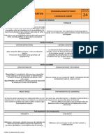 criterios diseño segun CISO----ficha 24 Progr. arq.
