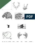 Animal Body Parts 40752