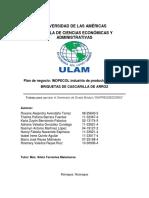 Briquetas_de_cascarilla_de_arroz nicaragua.pdf
