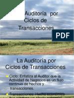 Auditoria Ciclos de Transacciones
