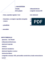 Semio Digestiv 2009 Partea a IIIa