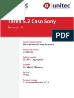 CASO SONY.docx