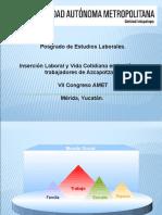 Contextos de inserción Laboral, Amet (1)