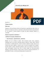 PLANUL A VIOLENȚA DOMESTICA.docx