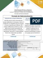 7- Heteroevaluación-Formato.docx