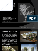 Vegetacion_Diseño