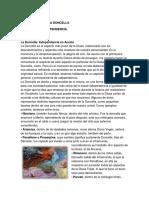 EL ARQUETIPO DE LA DONCELLA.pdf