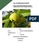 Jurnal Farmakognosi Gigih PDF