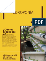 Hidroponia.proyecto