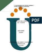 412423667-Unidad-1-Paso-1-Funcionamiento-de-Corteza-Cerebral-y-Funciones-Cerebrales-Superiores.docx