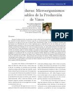 bacterias vino 2.pdf