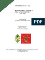 informe pedagogico 2016.docx