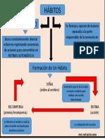 FORMACION DE UN HABITO.pptx