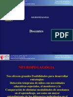 175619892-Bases-Neurologicas-Del-Aprendizaje