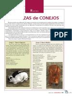 5401-razas-las-razas-de-conejos.pdf
