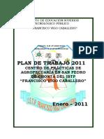 Plan de trabajo del Centro de prácticas de San Pedro de Chonta-con admisión