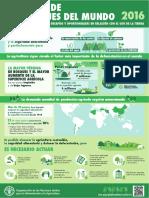 Infografia Bosques 2016 copia.pdf