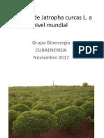 Situacion produccion mundial de biocomb  de Jatropha.pdf
