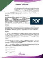 11.- COMPRAVENTA DE BIEN FUTURO