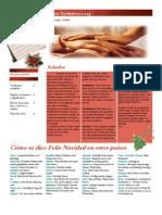 Newsletter Los Cuidadores diciembre 2010