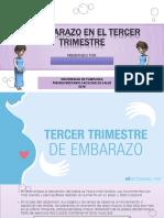 EL EMBARAZO EN EL TERCER TRIMESTRE