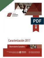 Caracterización-Mendoza-2017-1