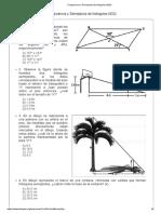 Congruencia y Semejanza de triángulos evaluacion.pdf