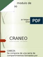 CRANEO.pptx