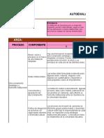 Gestion Academica_AUTOEVALUACION-PMI-POA-2019 AIPECITO  1