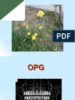 OPG_Ortodonţie_MD_6.pdf