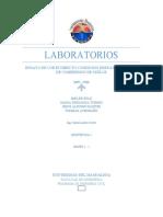 Lab CD y Compresion..docx