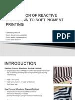 Soft Pigment project (1)
