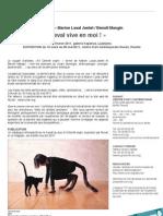 """""""Que le cheval vive en moi !"""" / Art Orienté objet / Performance & expo février/mars 2011"""