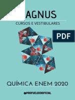 manual - quimica enem 2020. magnus