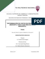determinacion de costos.pdf