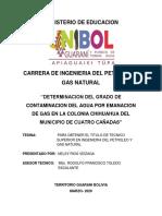 PDF TESINA NELSY RIOS