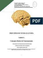 Conceptos básicos de neuroanatomía.docx
