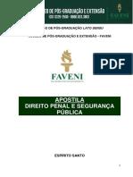 DIREITO PENAL E SEGURANÇA PÚBLICA