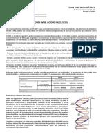 1-G.-WEB-Acidos-nucleicos