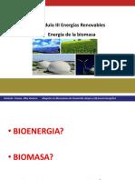 Energia de la biomasa_2016_pdf.pdf