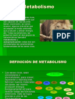 Sem.9 Metabolismo y Enzimas