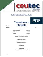 PresupuestoFlexible modificado.docx