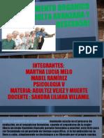 EXPOSICION ENVEJECIMIENTO ORGANICO (ADULTA AVANZADA Y DESCENSO)