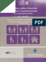 Estudios sobre derecho familiar